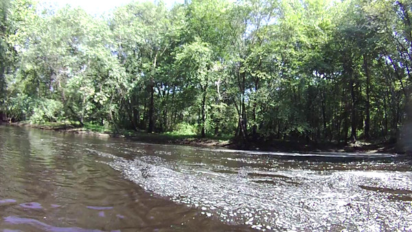 Rancocas Creek - Sept 2014