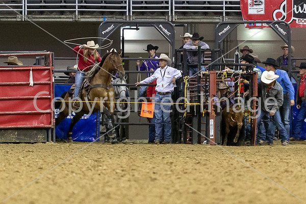 BreakAwayRoping