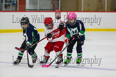 Newport Whalers Squirts vs Watertown 10U B at St George's 11am on 12/28/19