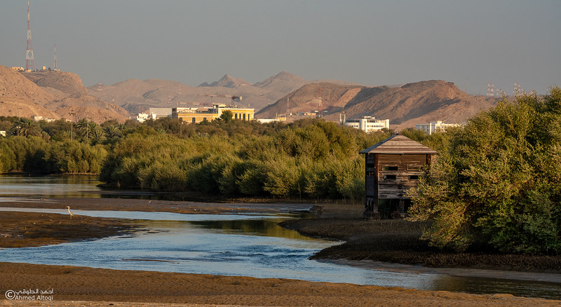 AL Qurum Park (33)-Muscat.jpg