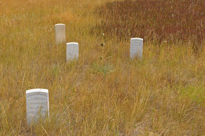 Markers at Little Bighorn Battlefield National Monument