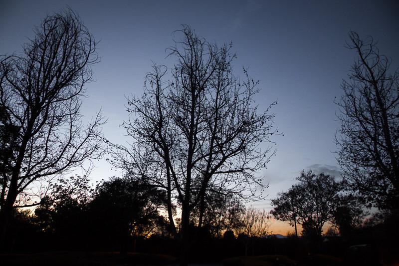 February 20 - La Verne sky.jpg