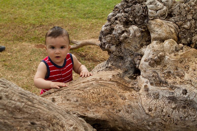 Hawaii2012-387.jpg