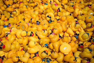 Whitewater-YellowDuckie