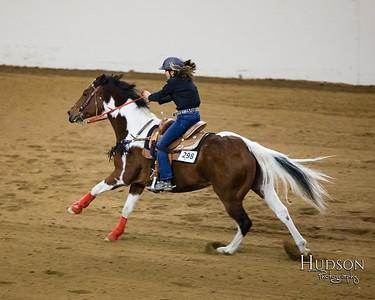 04 Cut Back Horse Jr