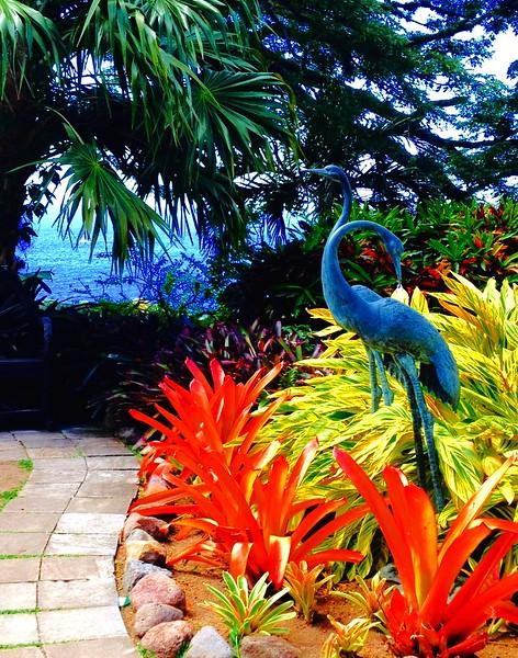 Carib Garden & Birds
