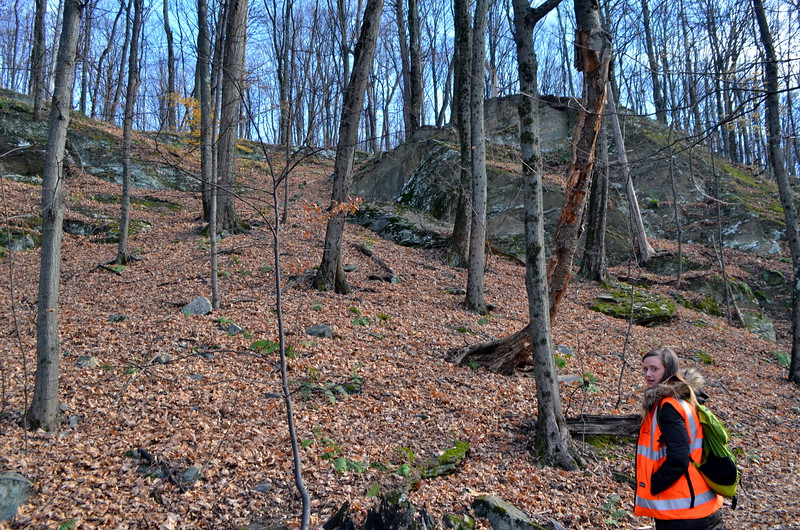 It would be a more more difficult climb without the meandering trail.