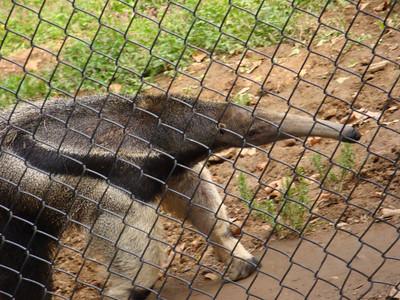 October, Philadelphia Zoo