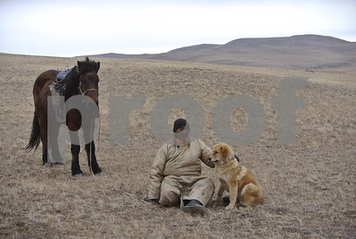 mongolian-bankhar-dog-tradition-revived-to-protect-sheep-and-snow-leopards