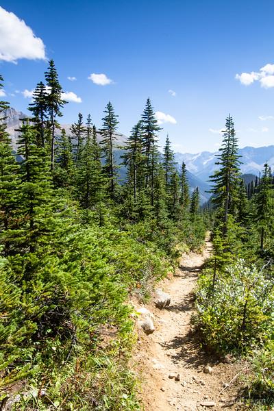 Iceline trail