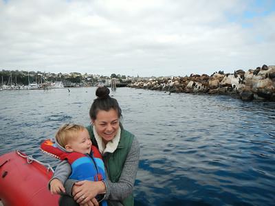 Orcas in Monterey Bay 08-2014 Nancy