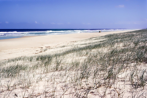 Australia 1981