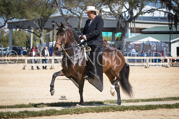 2015-FL State Fair Show