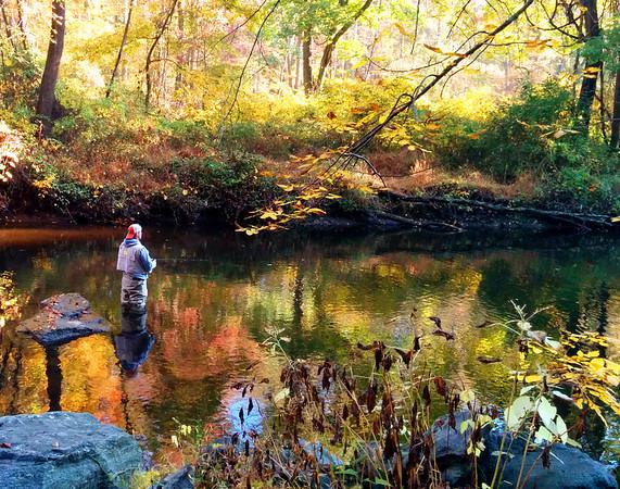 Ridley Creek State Park, Pennsylvania