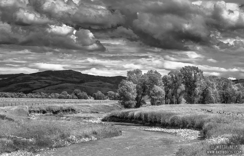 """Meandering Stream"". Photography by Wayne Heim"