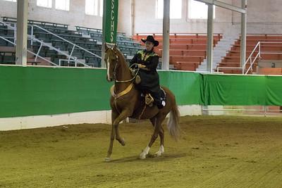 156 - Ladies Sidesaddle