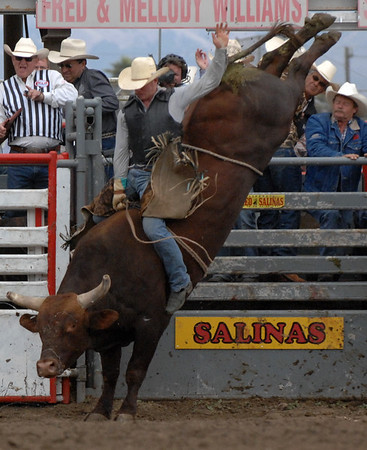 2011 RODEO