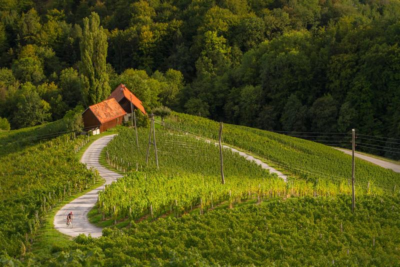 Green heart of Slovenia