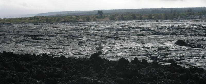 253- 20080412- Hawaii 15- Volcano Nat'l Park DSC_3049.jpg