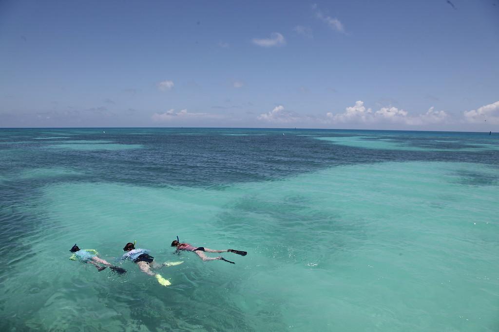 niños buceando en un viaje de un día a Key West a Dry Tortugas