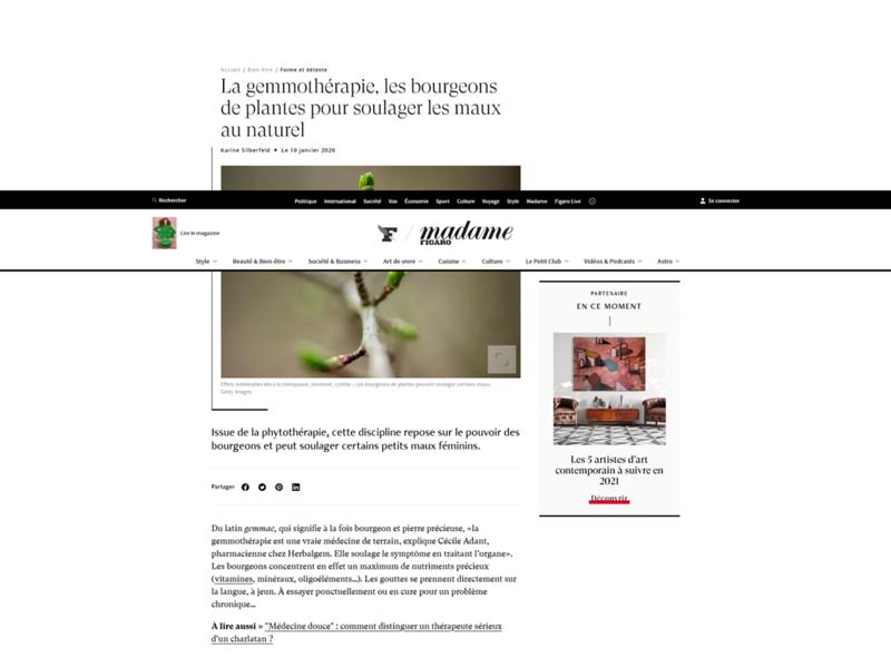 Screenshot_2021-03-10 La gemmothérapie, les bourgeons de plantes pour soulager les maux au naturel.png