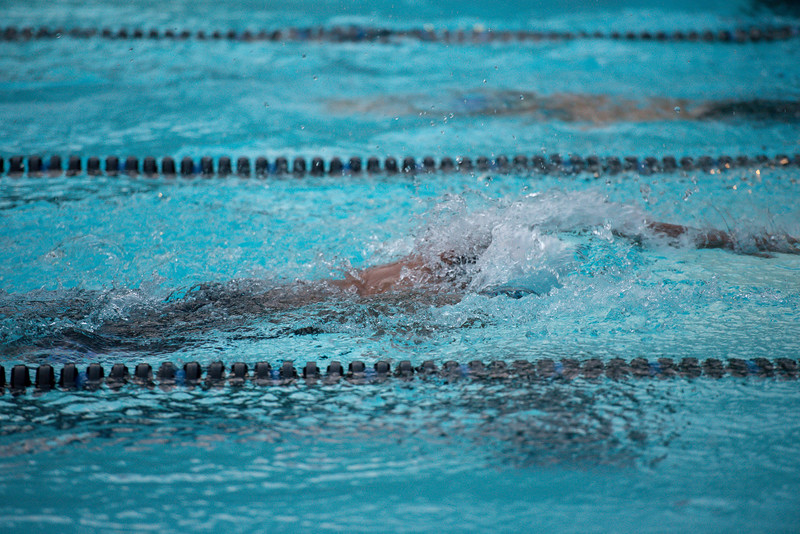 lcs_swimming_kevkramerphoto-1055.jpg