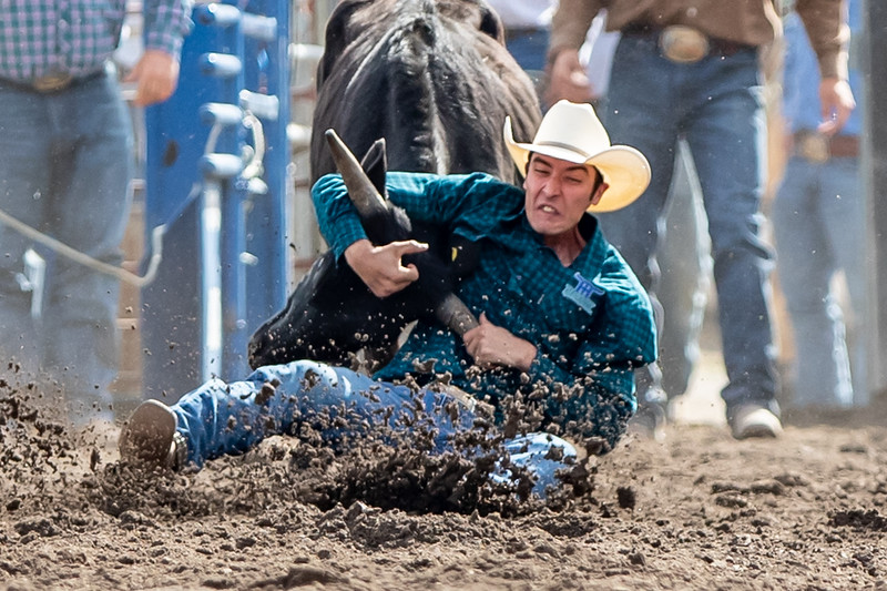 2019 Rodeo B (109 of 1309).jpg