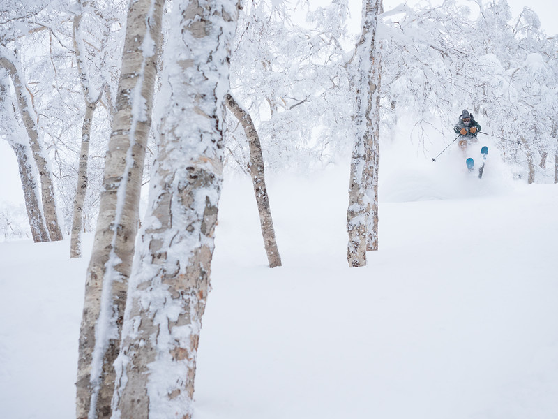 Air time betwen the trees of Asahidake Backcounrty