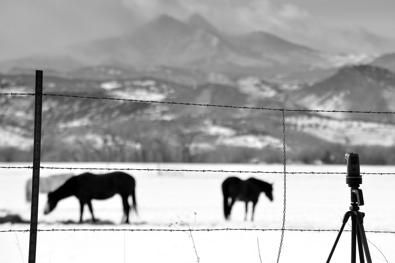 black and white snow pan.jpg