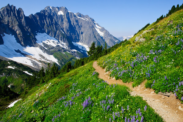 North Cascades National Park 1