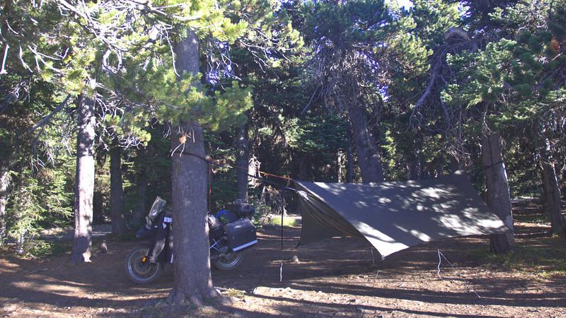 Hammock site on Table Mountain