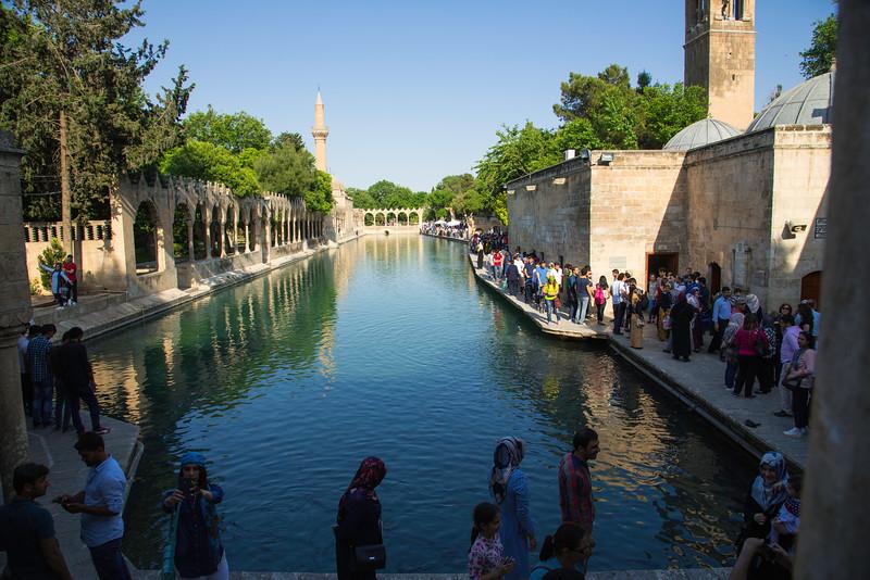 150516-165544-Turkey-6777.jpg