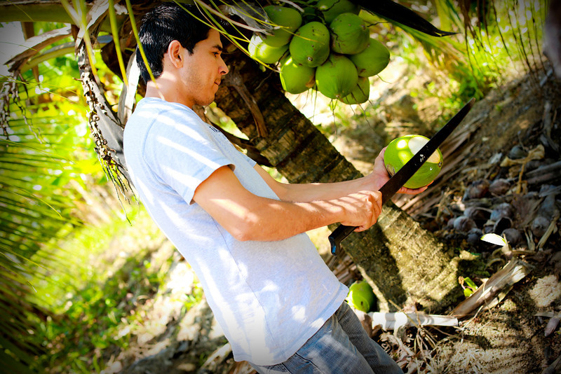 Our driver Deiner, on the way to La Fortuna, stopped by his house to treat us coconut water (coco pita) from his trees.