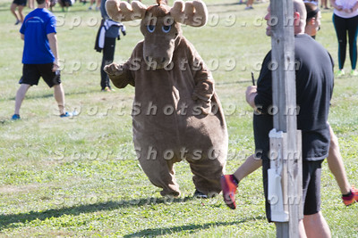 2015-08-22 Malone Moose is Loose