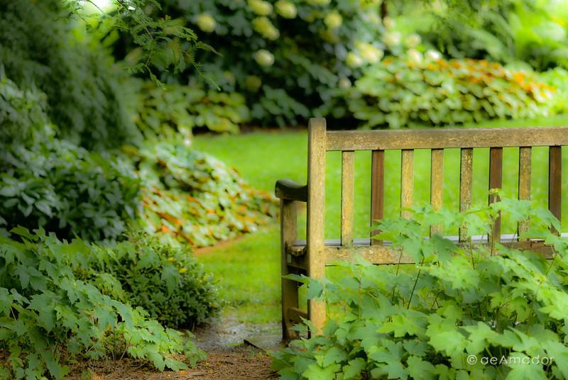 Cylburn Arboretum-aeamador-0037.jpg
