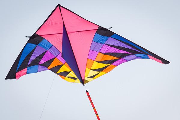 Treasure Island Kites 2013