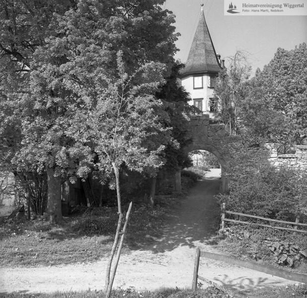 #170277   Schloss Wartensee; fwk