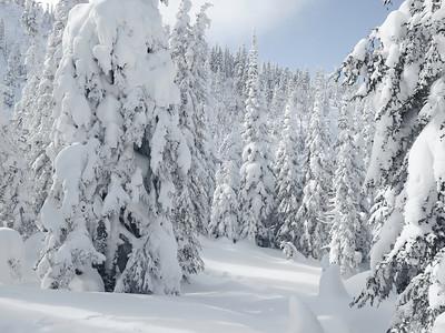 2019-02-20 Voyage raquette  Les Monts-Valin Saguenay (Michel Valin)