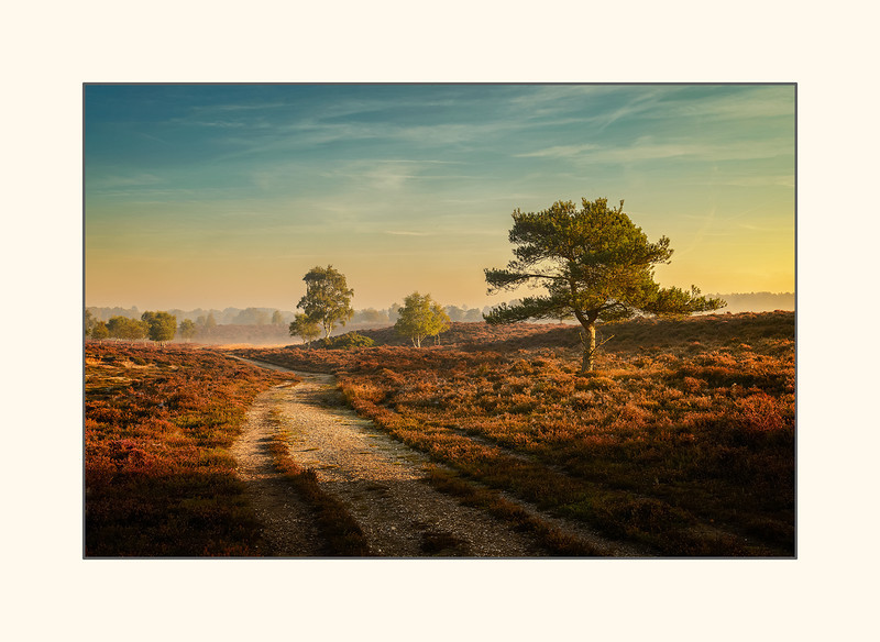Sunrise at Dunwich Heath.jpg