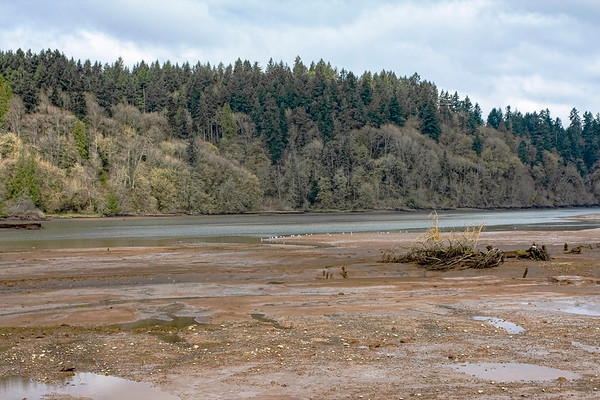 Remembering Nisqually NWR