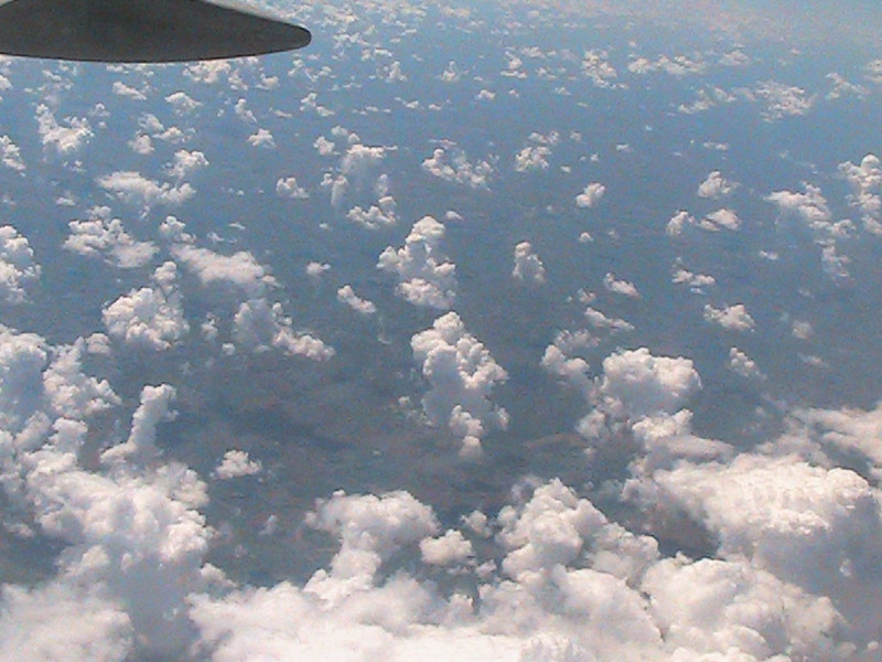 2011-08-10 61.jpg
