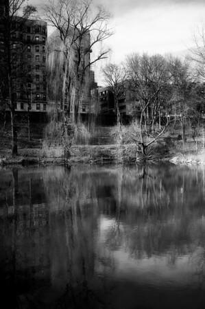 Central Park (D800)