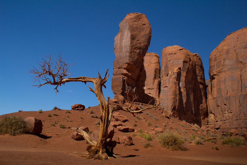 "The ""Thumb"", a free-standing formation which also resembles a western boot. It is approximately 100 feet high."