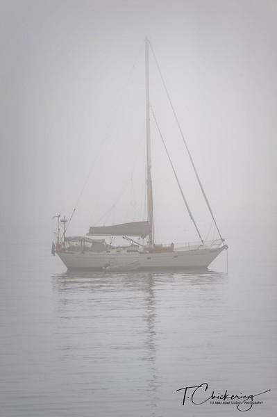 Maine Sailboat 2.jpg