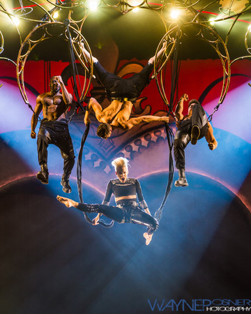 Top 10 Concert Photos of 2013