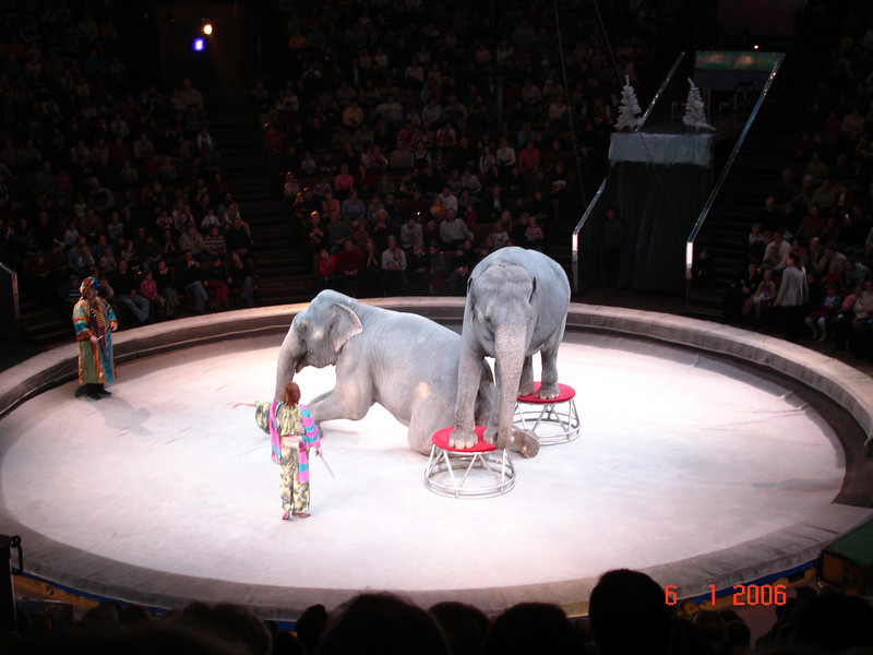 2006-01-06 Цирк с Капраловыми 36.JPG