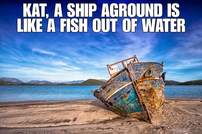 A Ship Aground.jpg