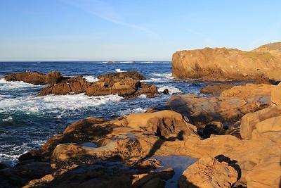 Pt Lobos and Carmel coast Jan 27th, 2017