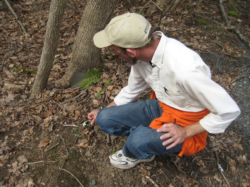 Tim enjoyed identifying some spring wildflowers along the way.