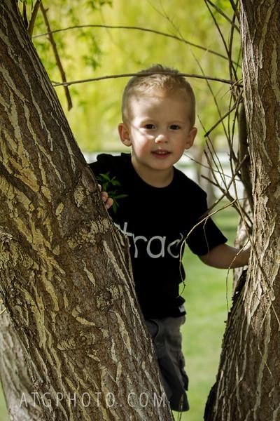 big tree climb.jpg